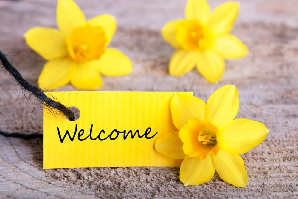A yellow welcome note surrounded by pretty yellow flowers