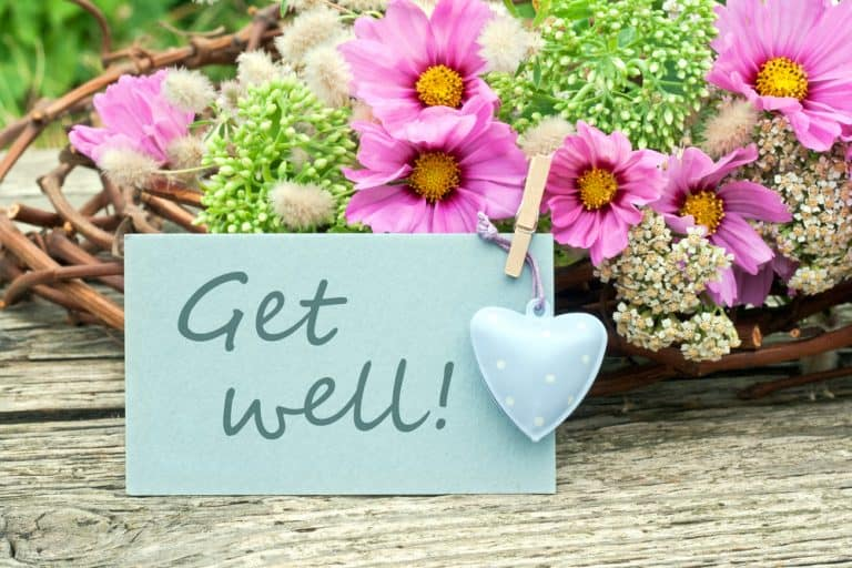 get well card sitting in front of pink flowers