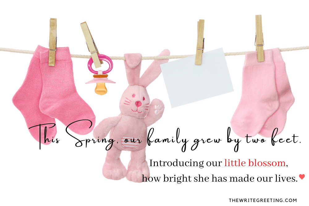 Female Clothes and bunny on washing line